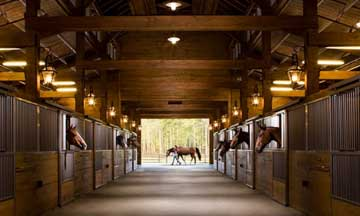 Palmetto Bluff Longfield Stables