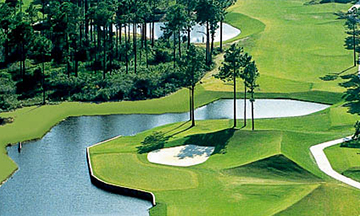 Palmetto Hall Plantation Golf Courses