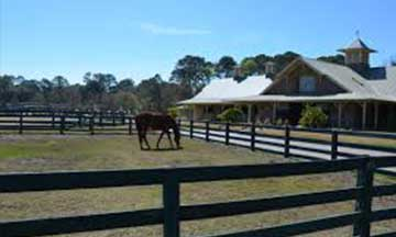 Sea Pines Plantation Lawton Stables & Riding Academy